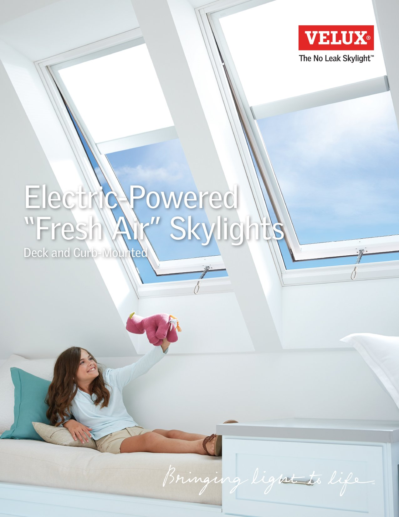 electricskylight-productguide